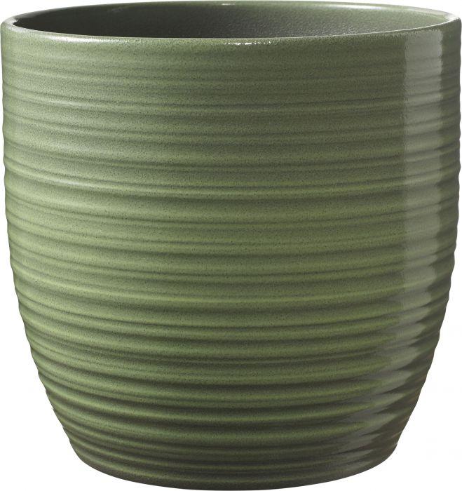 Suojaruukku Bergamo vihreä 13 cm