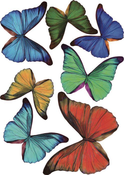Seinätarra Plage 3D Värikkäät Perhoset