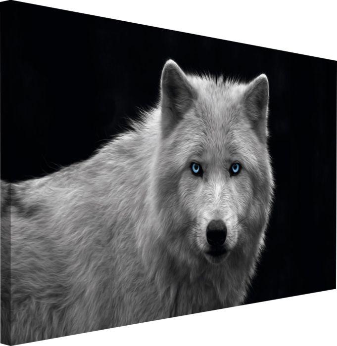 Sisustustaulu Reinders White Wolf Blue Eyes 70 x 118 cm