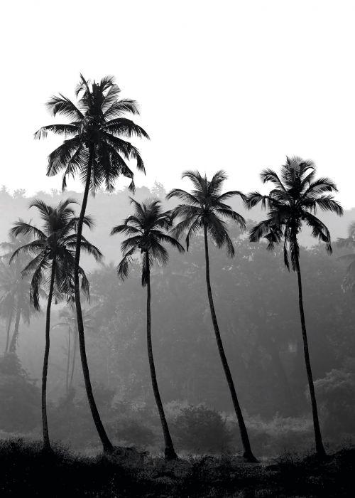 Sisustustaulu Reinders Black High Palms
