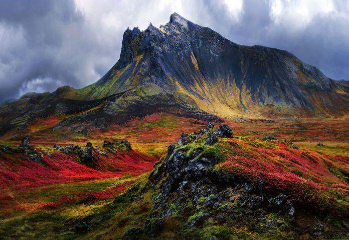 Fototapetti Mountain In Iceland 4 paneelia
