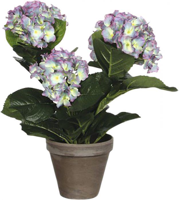 Silkkikasvi Hortensia 13,5 cm violetti