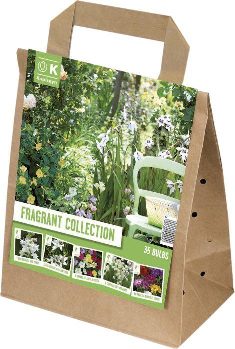 Kevätkukkasipuli Summer Collection Fragrant Garden 35 kpl