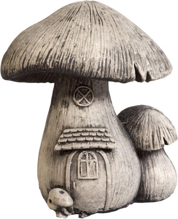 Puutarhakoriste sieni ikkunalla 16 cm
