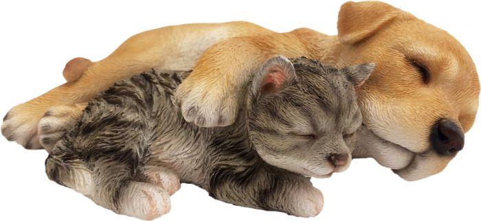 Pihakoriste nukkuvat koiranpennut