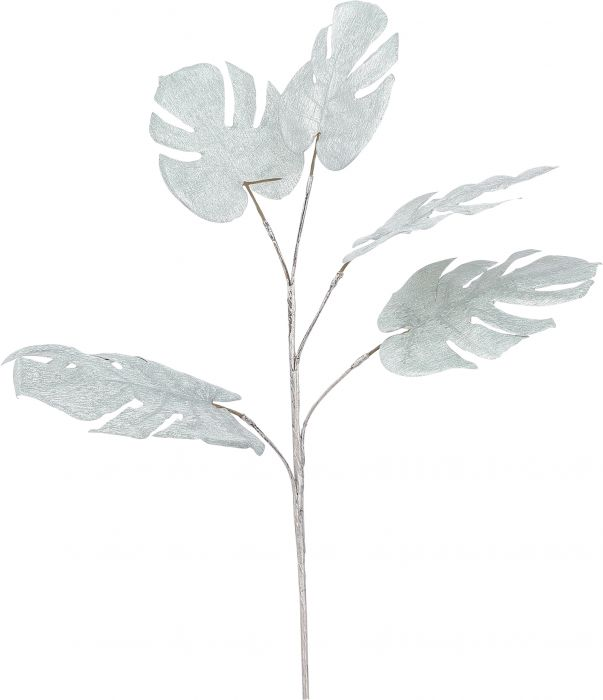 Silkkikasvi Peikonlehti 77 cm vihreä