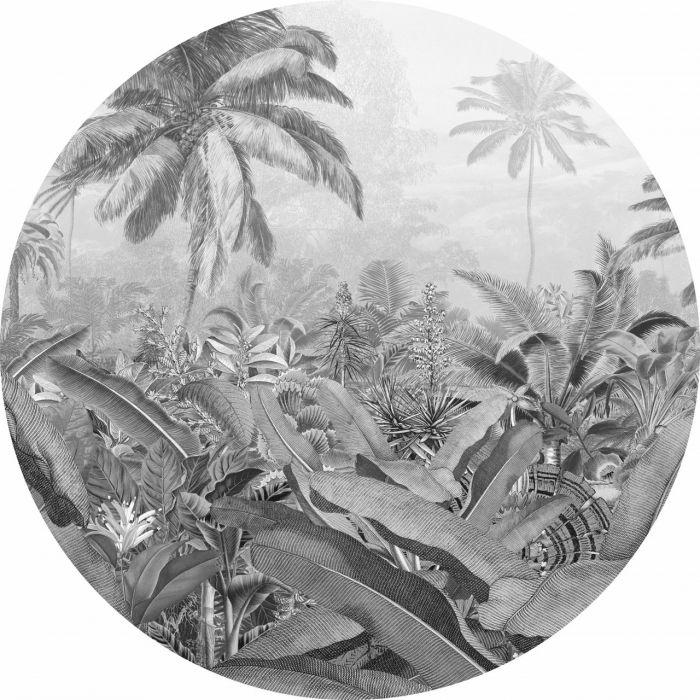 Tarratapetti Komar Dots Amazonian Spirit