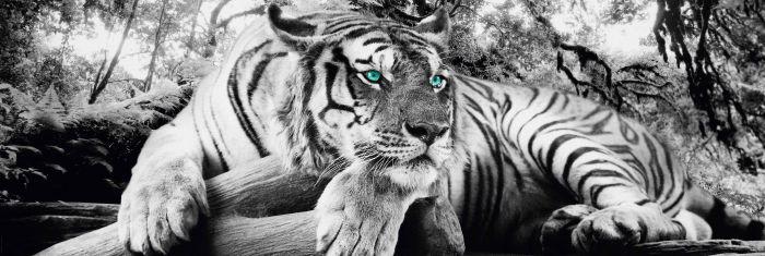 Sisustustaulu Reinders Tiger is watching you 52 x 156 cm