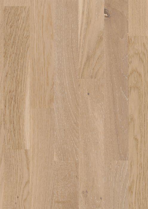 Parketti Parador Basic 11-5 Oak Rustic White Matt Lacquer