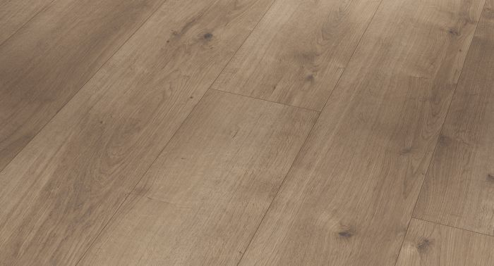 Vinyyli Parador Modular One Oak Pure Pearl-Grey