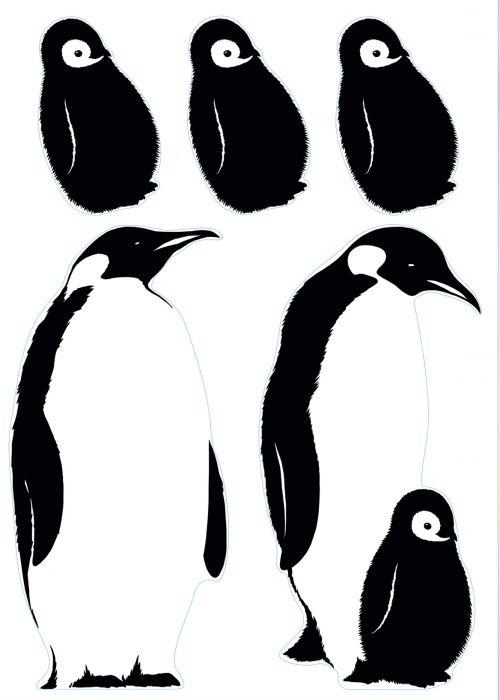 Julistetarra Plage Antarctic