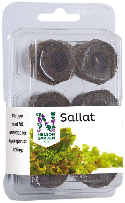 Siemenkapseli vesiviljelyyn salaatti