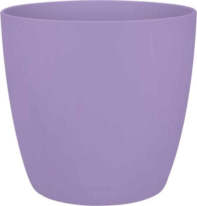 Suojaruukku Elho Brussels mini violetti 7,5 cm
