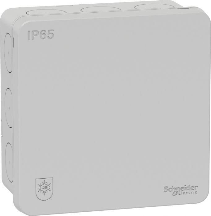 Kalvojakorasia Scheiner Electric Mureva IP65 Harmaa