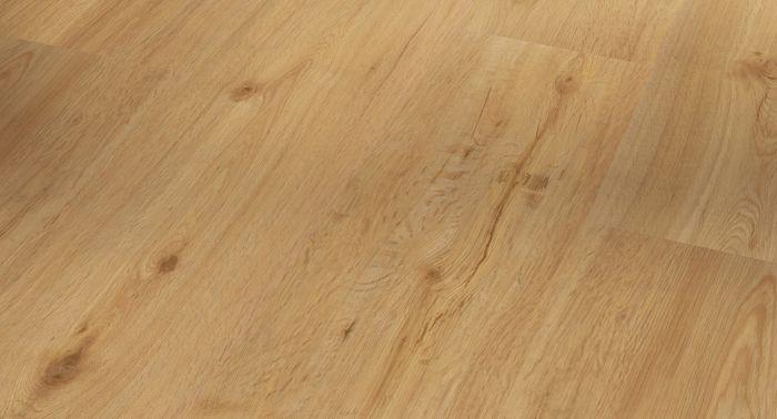 Vinyyli Parador Basic 20 Oak Natural