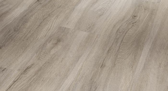 Vinyyli Parador Basic 20 Oak Pastel-Grey