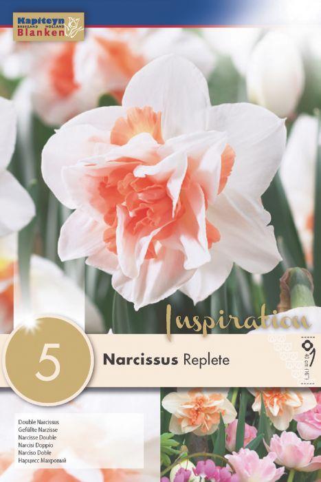 Syyskukkasipuli Narsissi Replete 5 kpl