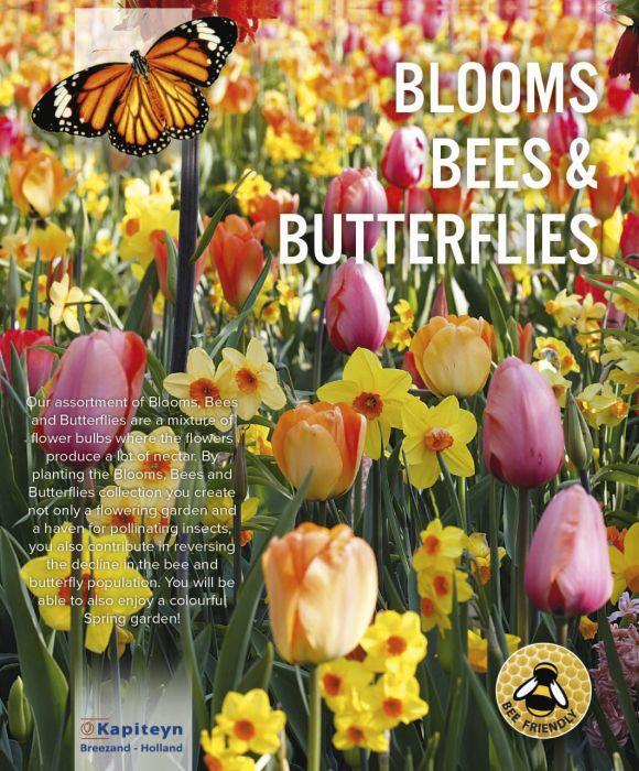 Kukkasipulilajitelma pastellivärit 25 kpl