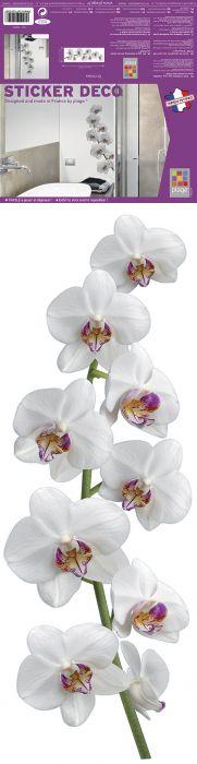 Julistetarra Plage Orkidea