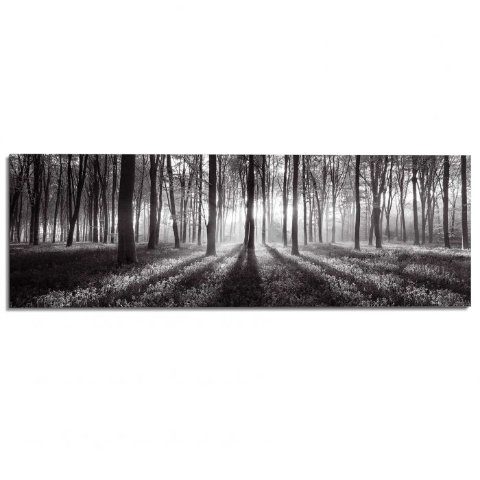 Sisustustaulu Reinders Sunbeam Forest B&W 52x156 cm