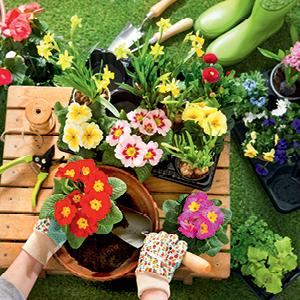 Kevään muistilista puutarhan hoitoon (huhti-touko)